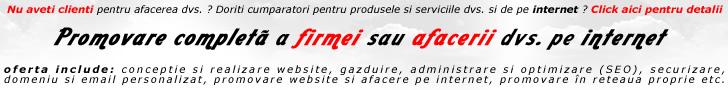 servicii de: promovare online profesionala, web design, programare, optimizare (SEO) - magazine online la cheie: generale, florarii online, tamplarie pvc, parchet, etc
